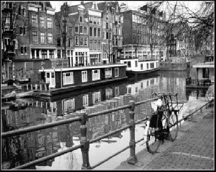 amsterdam rentals  ams Luxurious Sugar Apartment 446
